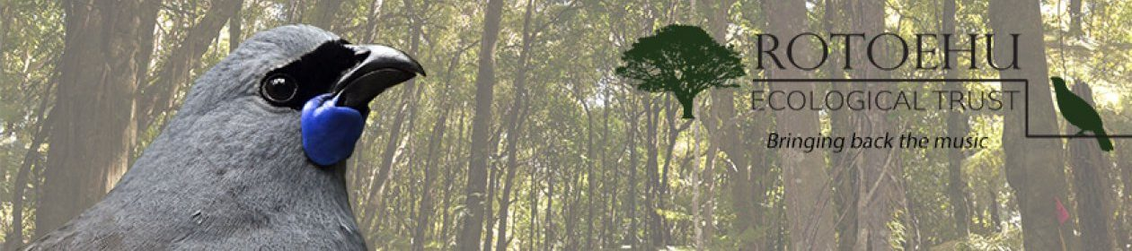 Rotoehu Ecological Trust